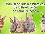 Produccion de carne de conejo