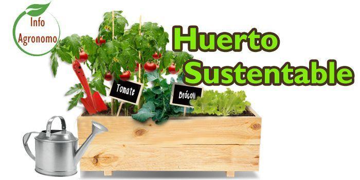 Huerto sustentable