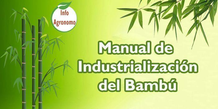 Manual de industrializacion de bambu