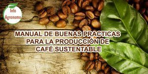 Manejo de cafe sustentable