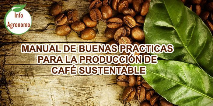 Manejo de cafe sustentable