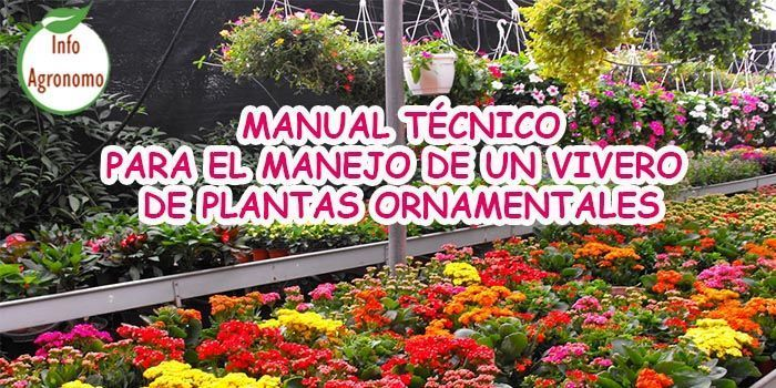 Manual t cnico para el manejo de un vivero de plantas for Materiales para un vivero forestal