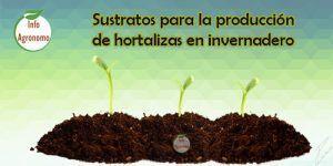 Sustratos para hortalizas