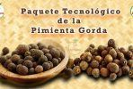 Guia para el cultivo de Pimienta Gorda