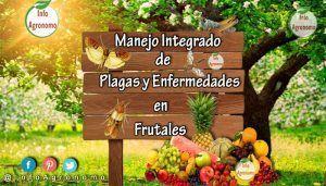 Manejo integrado de plagas y enfermedades en frutales