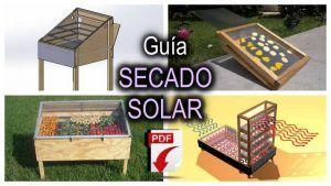 Guía para el secado solar de fruta y verduras