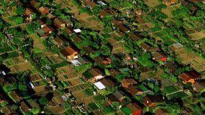 Les Avanchets y sus huertos urbanos