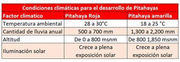 en que clima crece la pitahaya