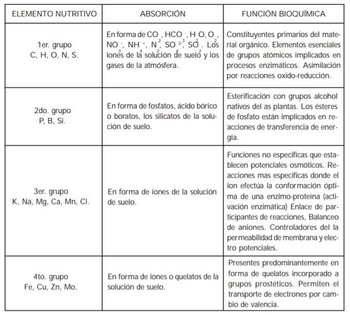 Clasificación de los nutrientes vegetales